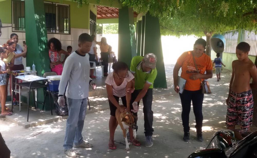 Foto: Reprodução | Alerta Bahia