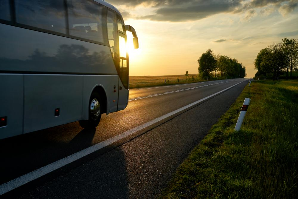 Está de férias e vai viajar de ônibus? Tudo o que você precisa saber!